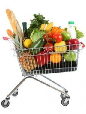rolling-grocery-carts-5