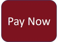 PayNow_Button